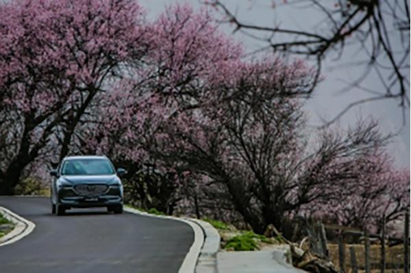 """驭见格调南国 Mazda CX-8""""新国风文化体验季·驾言篇""""即将启程527"""